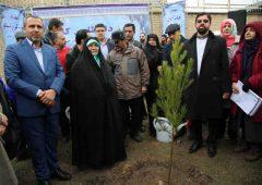 کاشت ۳ هزار نهال به مناسبت روز درختکاری در پارک جنگلی اسکاد شهرک استقلال منطقه۲۱