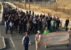 همایش بزرگ پیاده روی گرامیداشت هفته نیروی انتظامی در منطقه ۲۲ برگزار شد